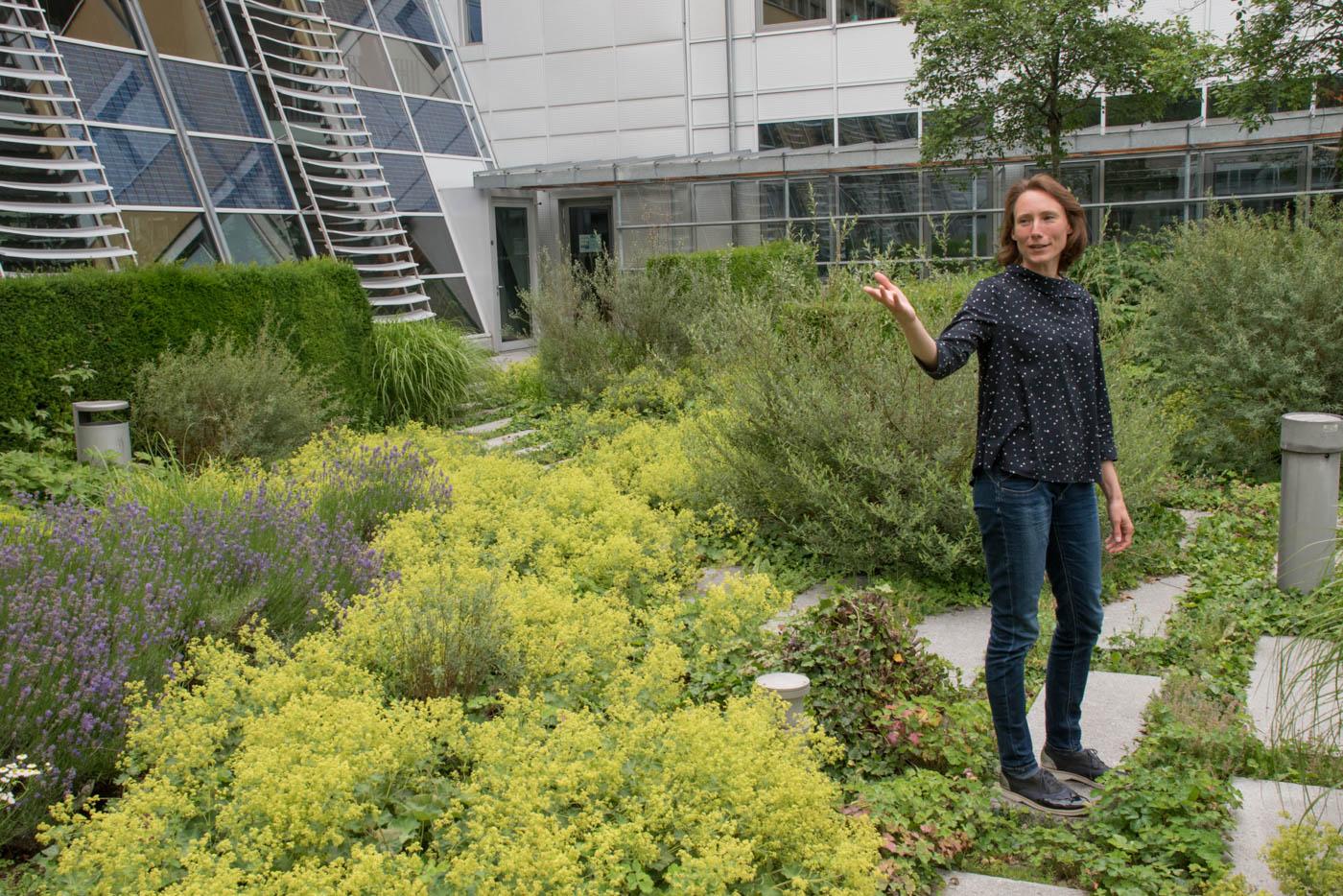 Frau Weidlich weist den Weg durch den Garten